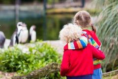 Enfants observant des animaux au zoo Photos libres de droits