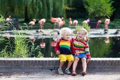 Enfants observant des animaux au zoo Image stock