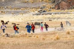 Enfants péruviens courant, Pérou Photo libre de droits