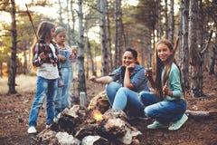 Enfants par le feu dans la forêt d'automne Photographie stock libre de droits