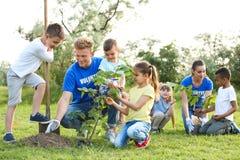 Enfants plantant des arbres avec des volontaires photo stock
