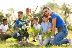 Enfants plantant des arbres avec des volontaires photographie stock