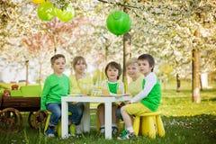 Enfants préscolaires doux heureux, célébrant le cinquième anniversaire du Cu Photographie stock libre de droits