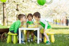 Enfants préscolaires doux heureux, célébrant le cinquième anniversaire du Cu Images libres de droits