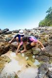 Enfants recherchant de petites créatures dans le rockp Image libre de droits