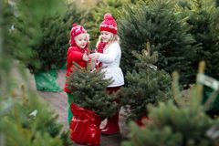 Enfants sélectionnant l'arbre de Noël Achat de cadeaux de Noël Photographie stock