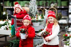 Enfants sélectionnant l'arbre de Noël Achat de cadeaux de Noël Photos libres de droits