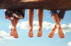 Enfants s'asseyant dans un arbre balançant leurs pieds Images libres de droits