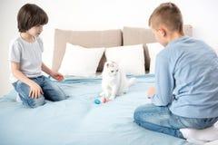Enfants sereins regardant l'animal familier Image stock