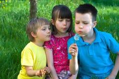 Enfants soufflant un pissenlit Photographie stock