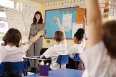 Enfants soulevant des mains dans une classe d'école primaire, vue d'angle faible photos libres de droits