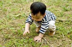Enfants sur la pelouse Image stock