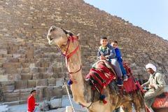 Enfants sur le chameau en pyramides de Gizeh Images stock