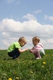 Enfants sur le pré Photos stock