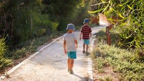 Enfants sur un chemin en parc naturel Image stock