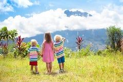 Enfants trimardant dans les montagnes et la jungle Image libre de droits