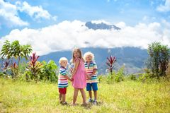 Enfants trimardant dans les montagnes et la jungle Images libres de droits