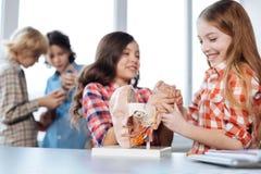 Enfants vibrants brillants appréciant leur étude Photo stock