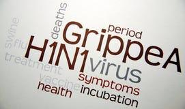 Enfermedad de la gripe H1N1 de los cerdos con el virus Fotos de archivo