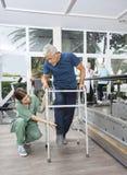 Enfermeira fêmea Helping Senior Patient com Walker In Fitness Studi Foto de Stock
