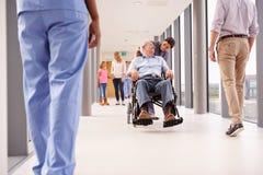 Enfermeira Pushing Senior Patient na cadeira de rodas ao longo do corredor Imagem de Stock Royalty Free