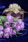 enfermez dans une boîte les tulipes actuelles de cadeau Photographie stock