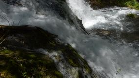 Enfoca adentro el río metrajes