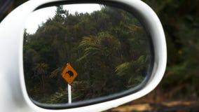 Enfoque adentro en un kiwi que la señal de tráfico reflejó en un espejo de coche metrajes