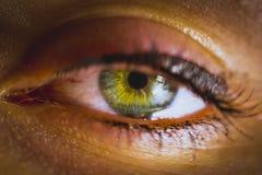 Enfoque grande de los ojos imágenes de archivo libres de regalías