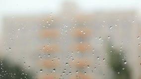 Enfoque la tracción del vidrio con gotas de lluvia al edificio. almacen de metraje de vídeo
