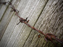 Enforcement. A rusted wire on a wooden fence Stock Image