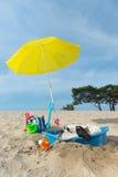 Enfriamiento abajo para el perro en la playa Foto de archivo libre de regalías