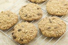 Enfriamiento de las galletas de pasa de la harina de avena Imagen de archivo