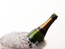 Enfriamiento de una botella de vino Imagenes de archivo