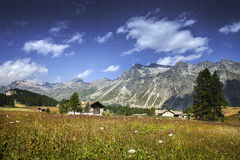 Engadina Royalty Free Stock Photography