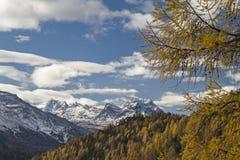 秋天在Engadine 免版税图库摄影