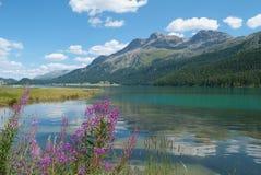 engadine jezioro zdjęcie stock