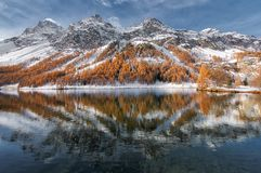 Engadine valley in Switzerland. Autumn reflection in the lake.  royalty free stock photography