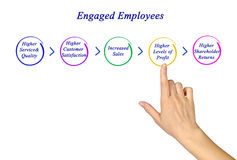 Engaged Employees Royalty Free Stock Photography