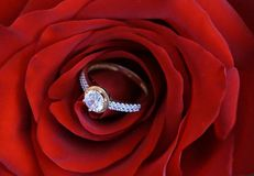 Engagement. Big ring for engagement with zircons as a suprise for woman suitable as a portrait or background for wedding annoucement Royalty Free Stock Photography