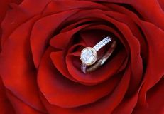 Engagement. Big ring for engagement with zircons as a suprise for woman suitable as a portrait or background for wedding annoucement Royalty Free Stock Photo