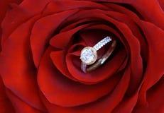 Engagement Royalty Free Stock Photo