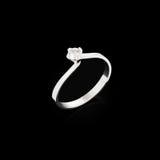 Engagement diamond ring Royalty Free Stock Photo