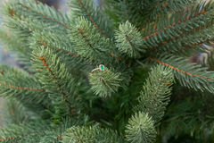 Engagement emerald ring on a fir tree. Christmas gift. Jewelry Royalty Free Stock Image