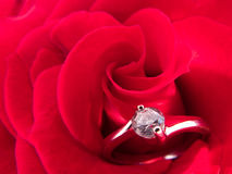 Engagement ring. On a red rose royalty free stock images