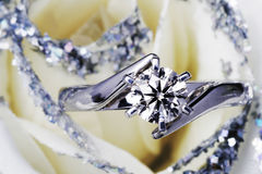 Engagement Ring. Close-Up Of Engagement Ring In White Rose, Top View stock image