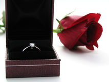 Engagement Ring. Diamond ring in an opened box, with a red rose in the background. Photographed on white background with some slight shadows royalty free stock image