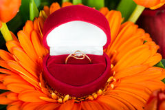 Engagement ring in box on gerbera flower Royalty Free Stock Photos