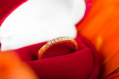 Engagement ring in box on gerbera flower Stock Photo