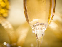Engagement Ring in Champagne with Tag. Engagement Ring in Champagne with Copy Space Stock Images